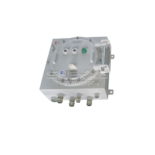SH-KZX explosion-proof control push box(Button box d II C/DIP)