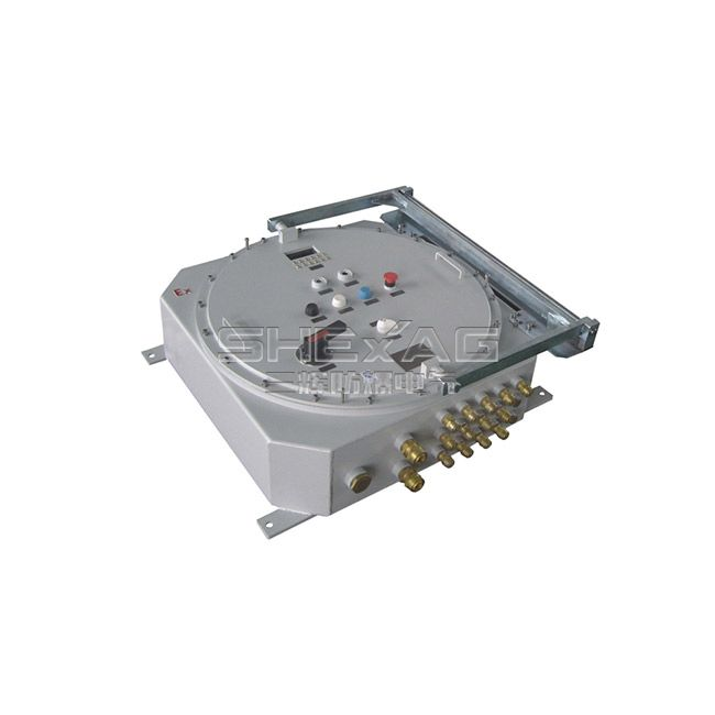 SH-KZX explosion-proof control box(power,lighting d II C,de II C)