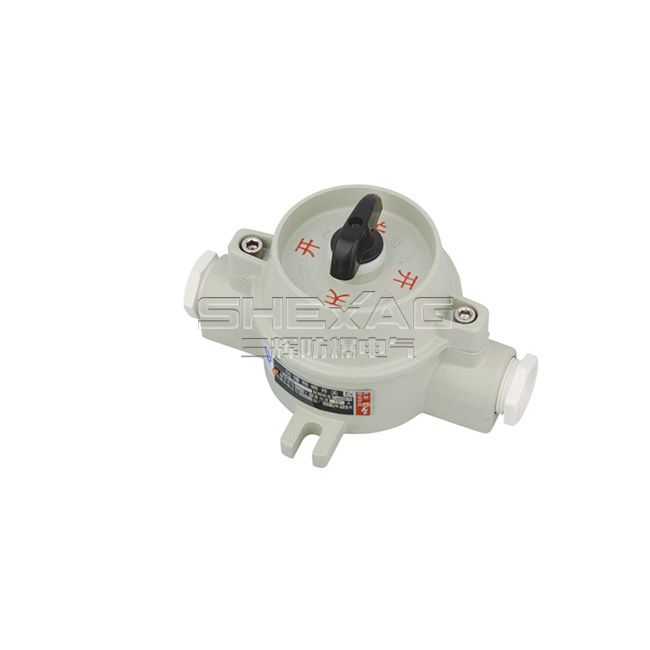 SH-BZM-10 explosion-proof illumination switch(d II B,de II B)